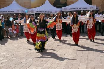 Ahmed-i Hani Kültür, Sanat ve Turizm Festivali