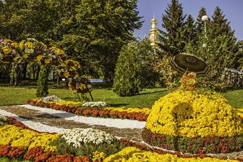 Autumn's Colors and Chrysanthemum Fest