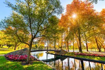 Avustralya Ulusal Botanik Bahçeleri