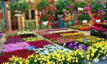 Bağdat Çiçek Festivali