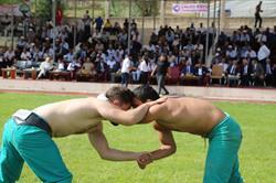 Bal Karakucak Güreş Festivali