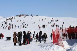 Bingöl Hesarek Festivali