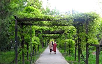 Bükreş Botanik Bahçesi