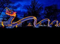 Dragon Lights Albuquerque