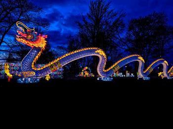 Dragon Lights Albuquerque