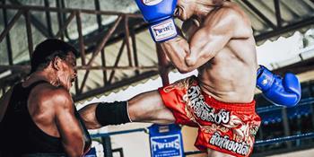Dünya Thai Dövüş Sanatları