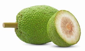 Ekmekağacı Meyvesi