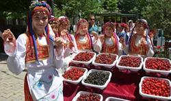 Geleneksel Yağlı Pehlivan ve Kiraz Festivali