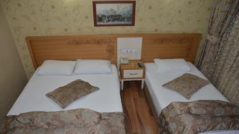 Hotel Dedemin 1