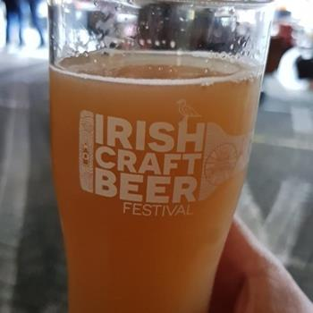 Irish Craft Beer ve Cider Festivali
