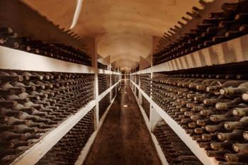 Kişinev şarapları