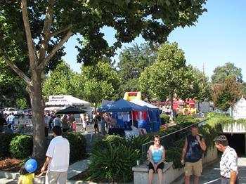 Mountain View Sanat ve Şarap Festivali