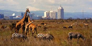 Nairobi Ulusal Parkı