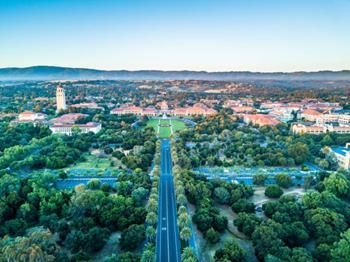 Palo Alto Hakkında