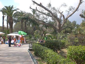 Parc du Belvedere