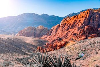 Red Rock Canyon Ulusal Koruma Alanı