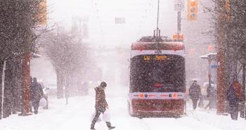 Toronto'ya Ne Zaman Gidilir? - Hava Durumu - İklim