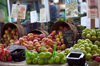 Wasatch International Food Festival