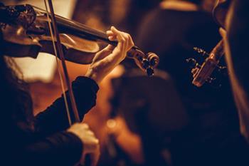 Zagreb Soloist